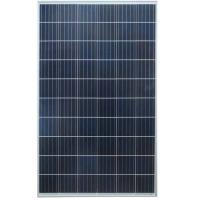 Солнечная панель поликристаллическая Sila 300Вт (24В)